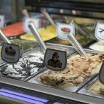 The Scoop on Alesci's Gelato